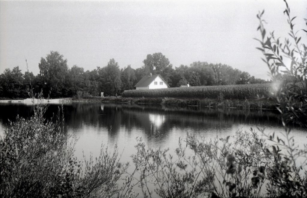 Teich im Moos