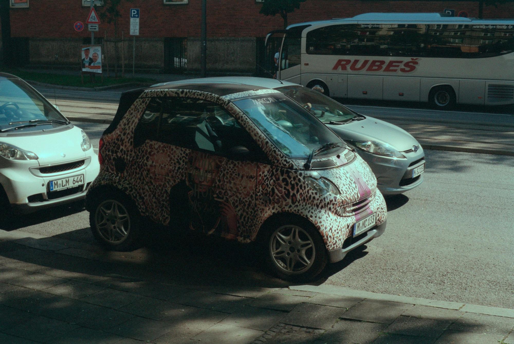 Smart Leopard