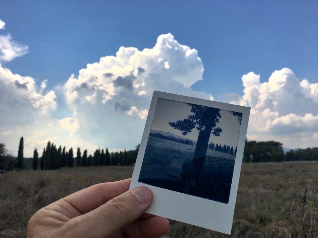 Die Bäume der Toskana, San Galgano